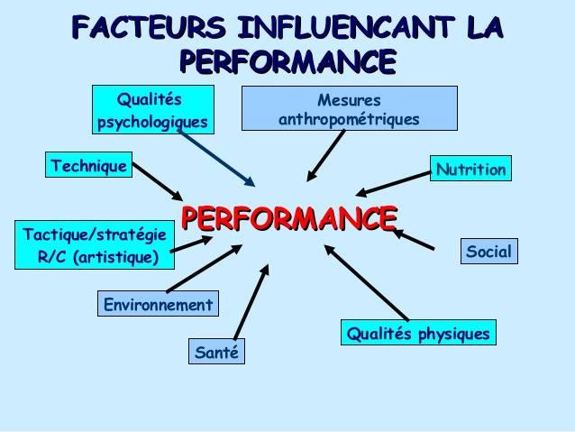 Facteurs Influencant la performance _ PMYearning